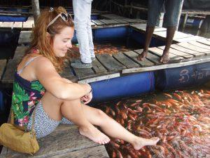 Peces en Madu River