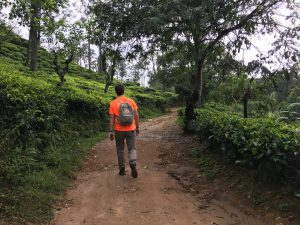 Trekking Little Adam's Peak