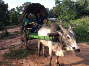 Vaca y carro Sigiriya