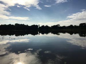 Reflejo lago Sigiriya